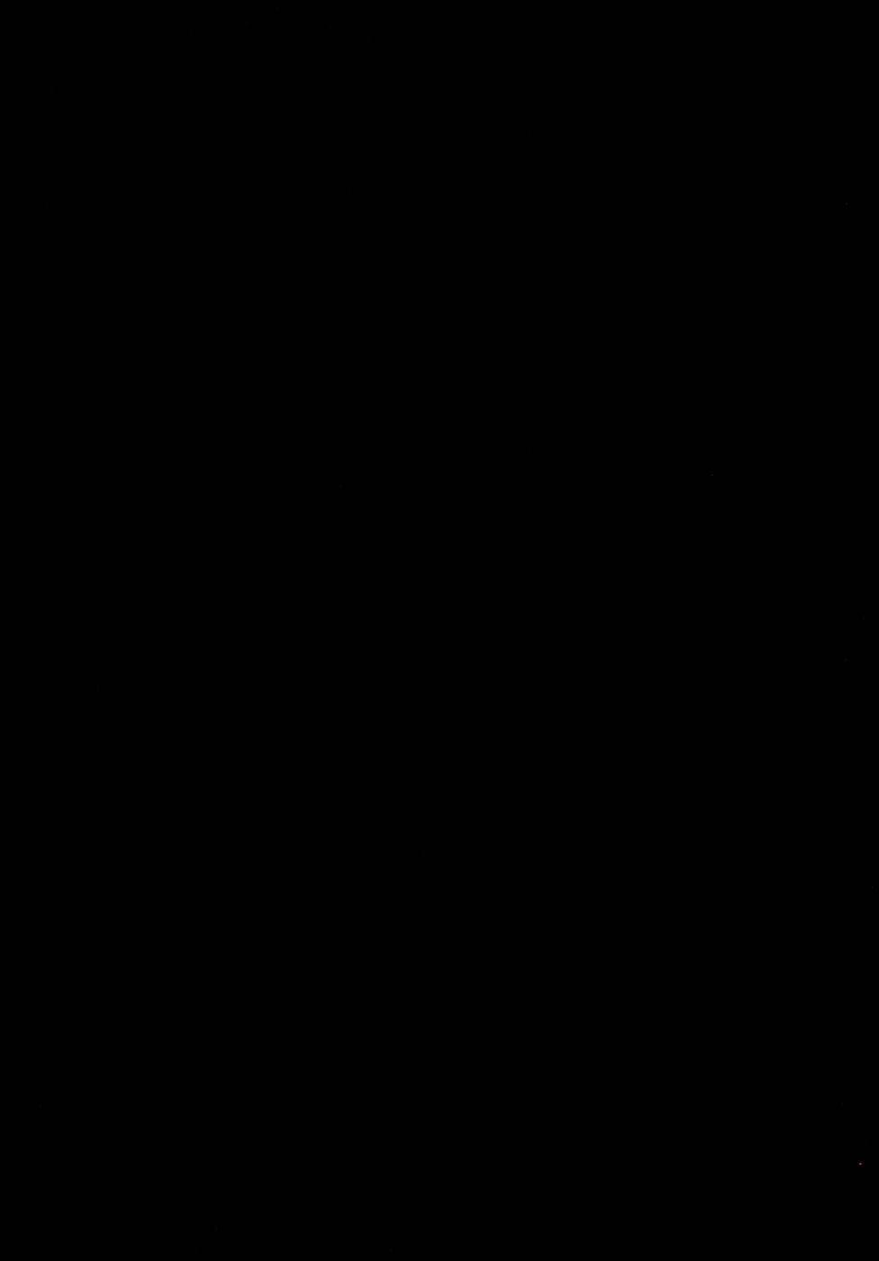 Meijoku 41