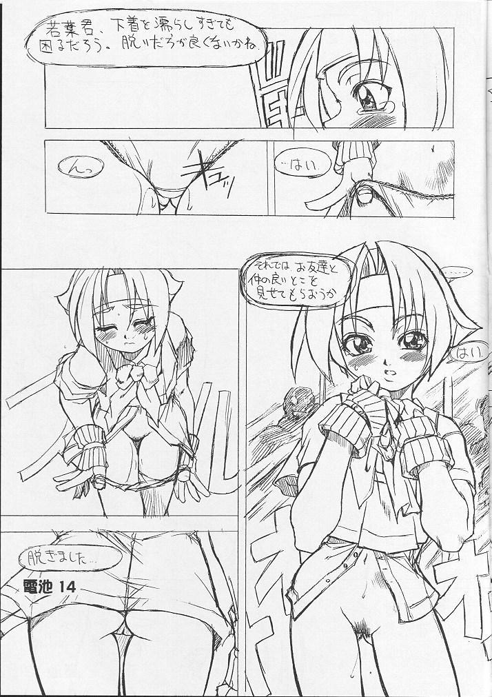 Denchi Battery Vol.2 12