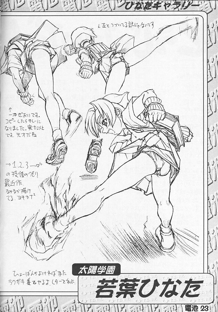 Denchi Battery Vol.2 21