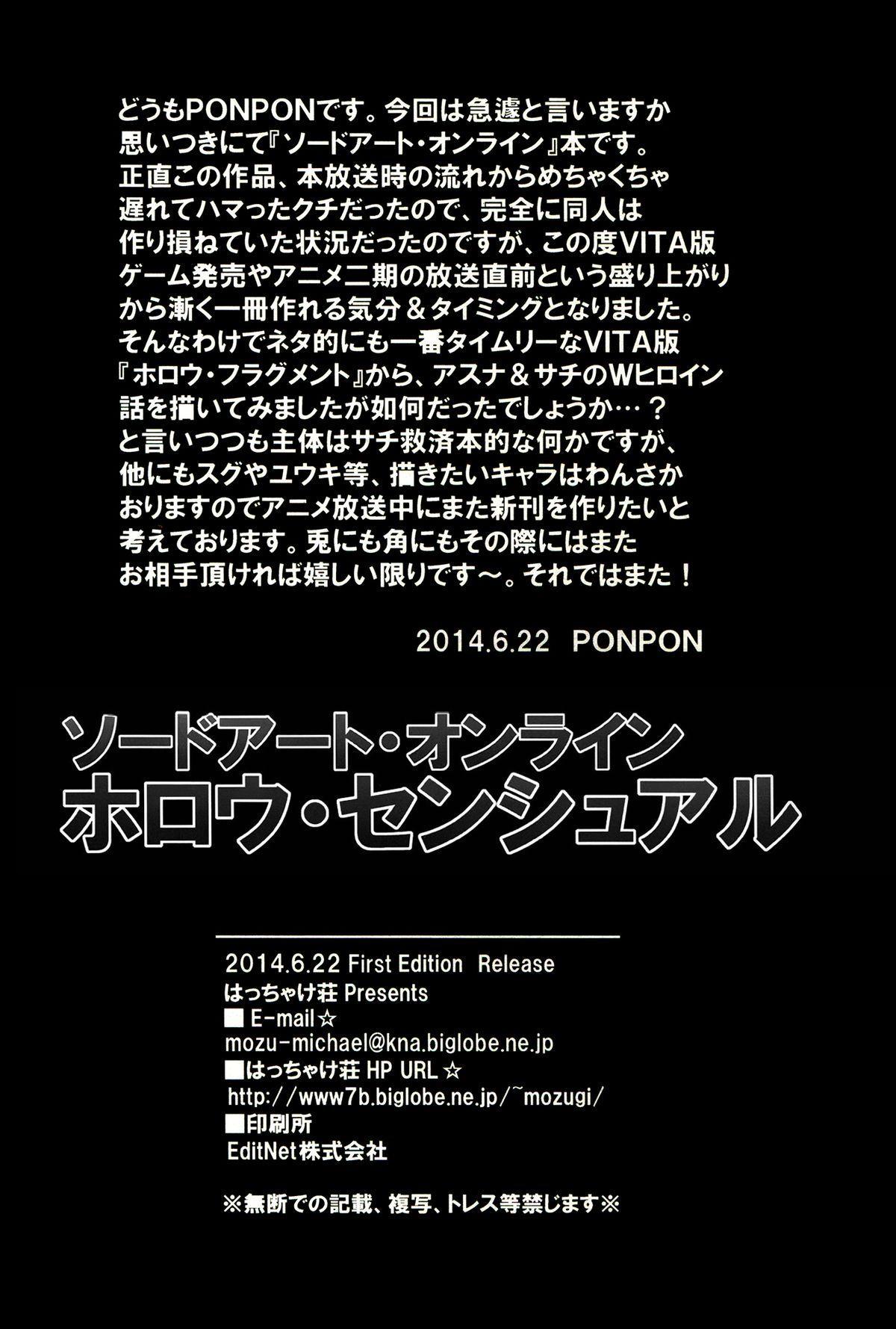 Sword Art Online Hollow Sensual 20