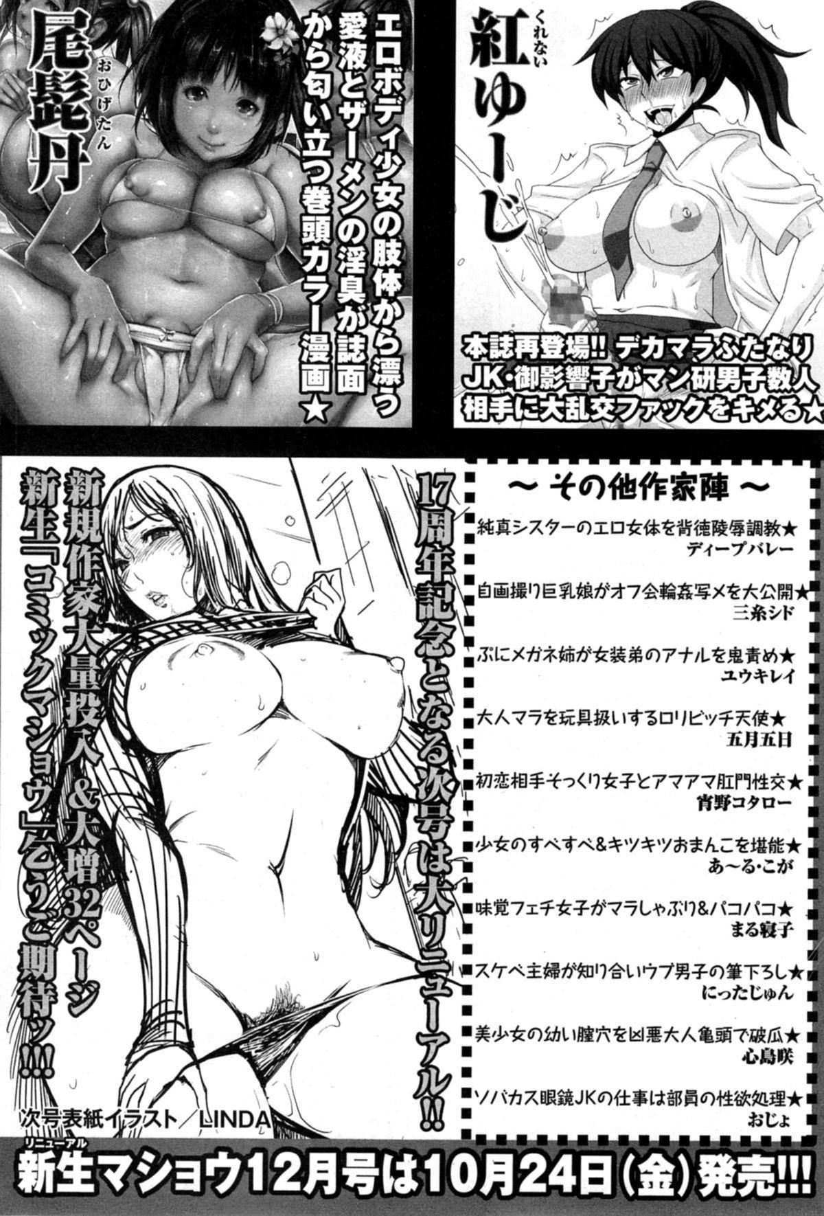 COMIC Masyo 2014-11 260