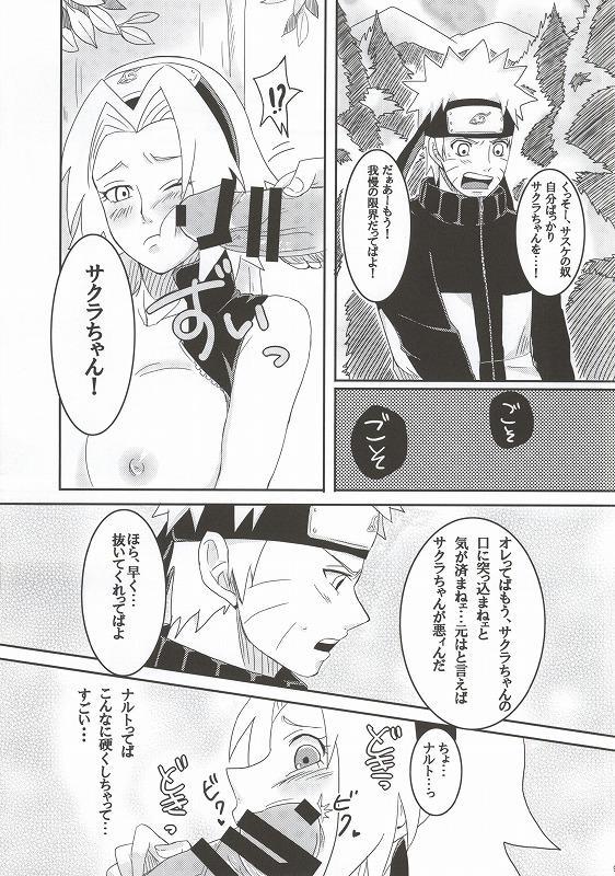 Shinobi no Kokoroe 5