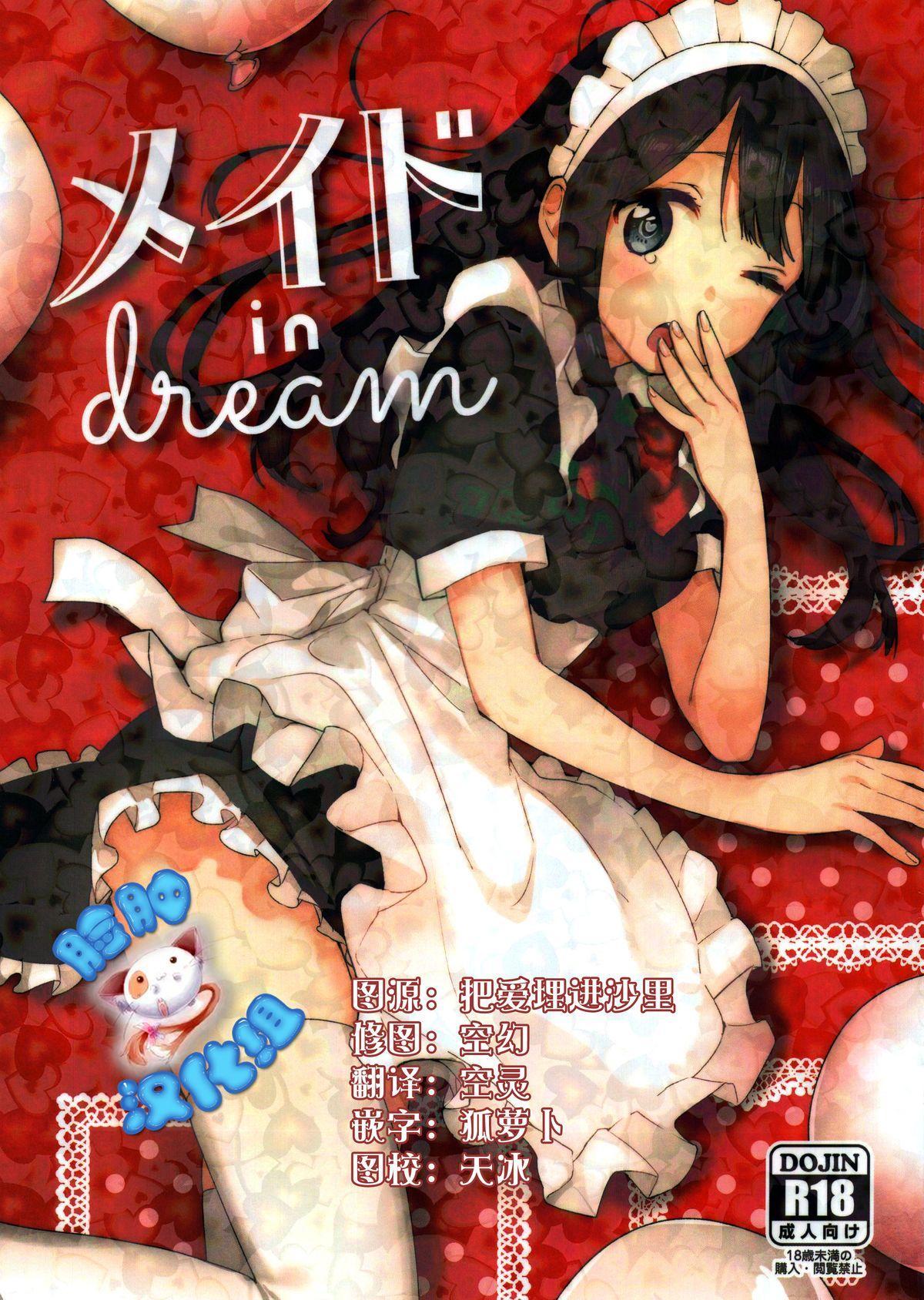 Meido in dream 0