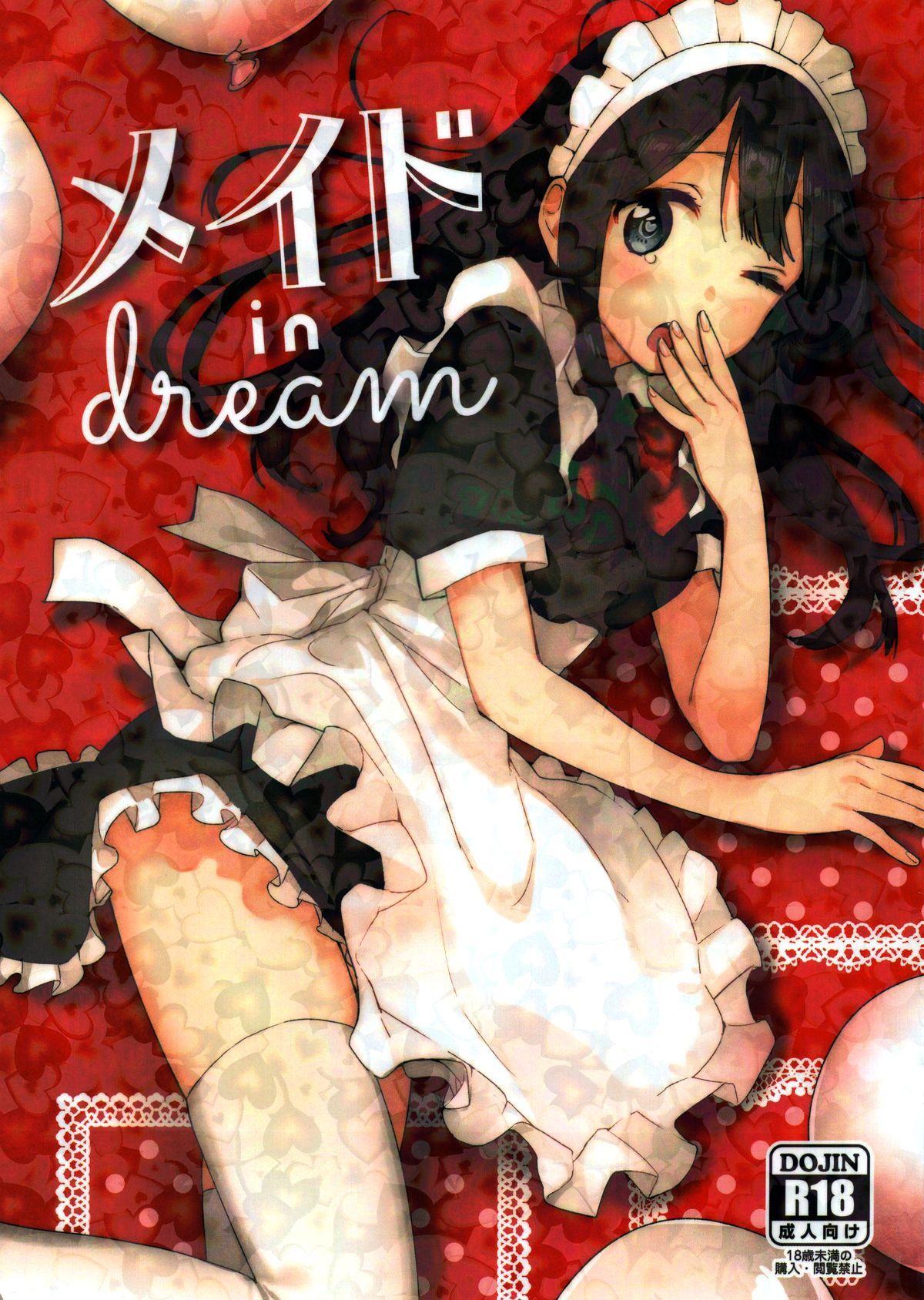 Meido in dream 1