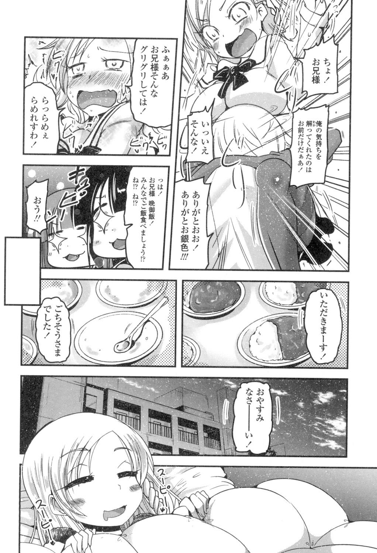 Shikoshisu 50