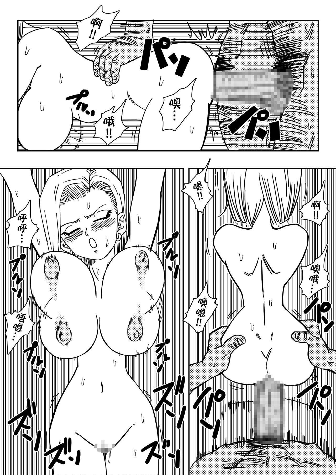 18-gou to Mister Satan!! Seiteki Sentou! 9