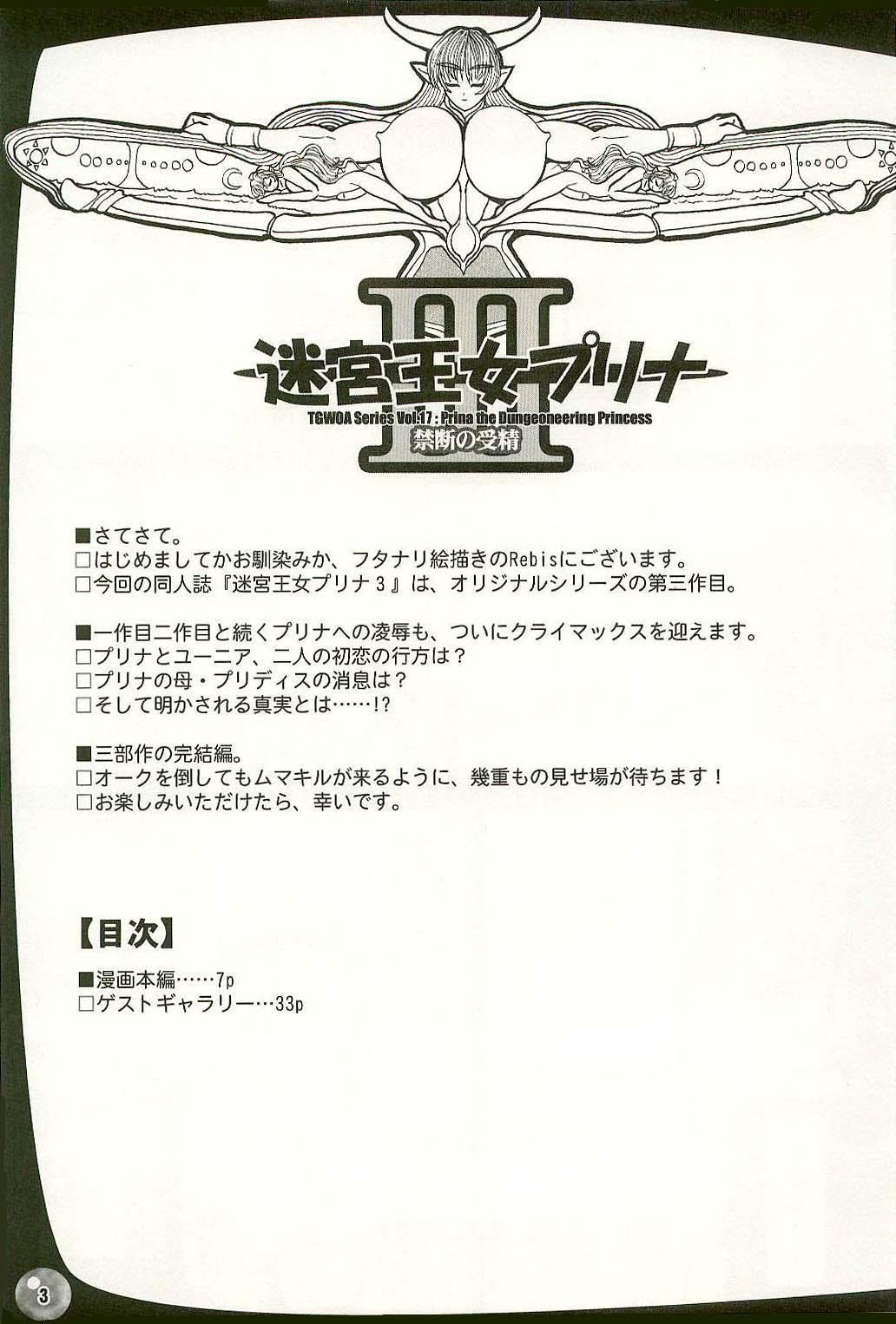 TGWOA Vol.17 - Meikyuu Oujo Prina 3 0