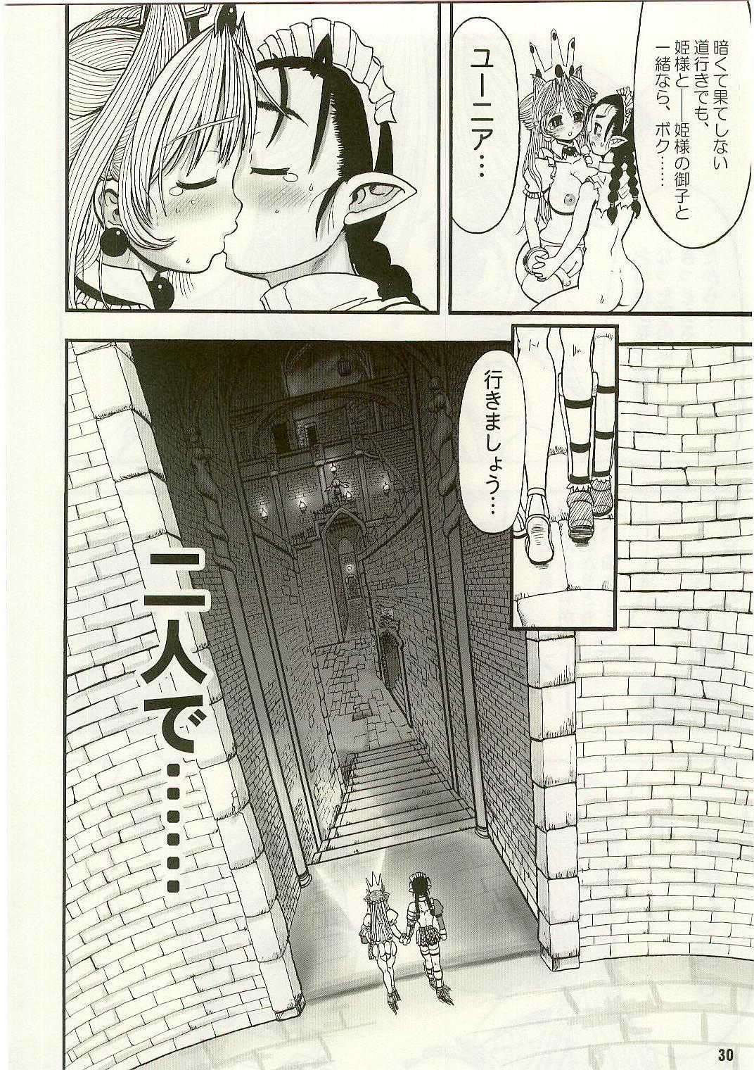 TGWOA Vol.17 - Meikyuu Oujo Prina 3 27