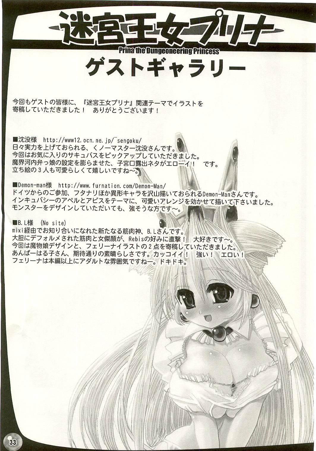 TGWOA Vol.17 - Meikyuu Oujo Prina 3 29