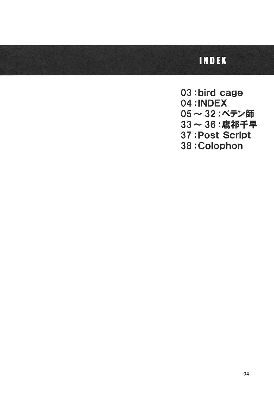 Bird Cage 2