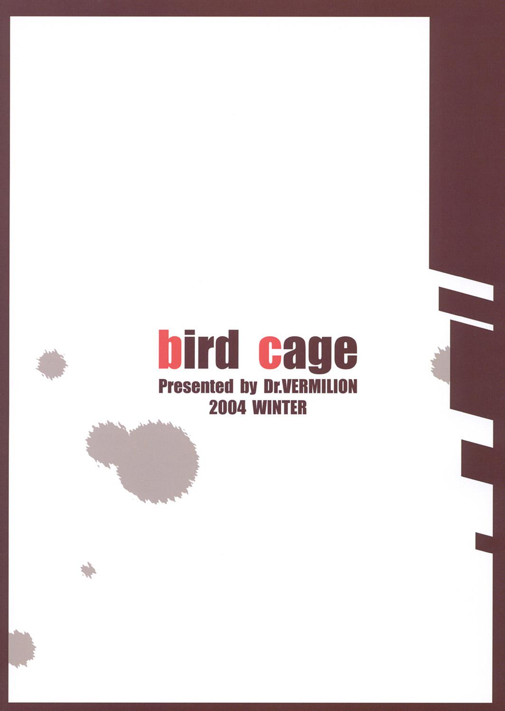 Bird Cage 37