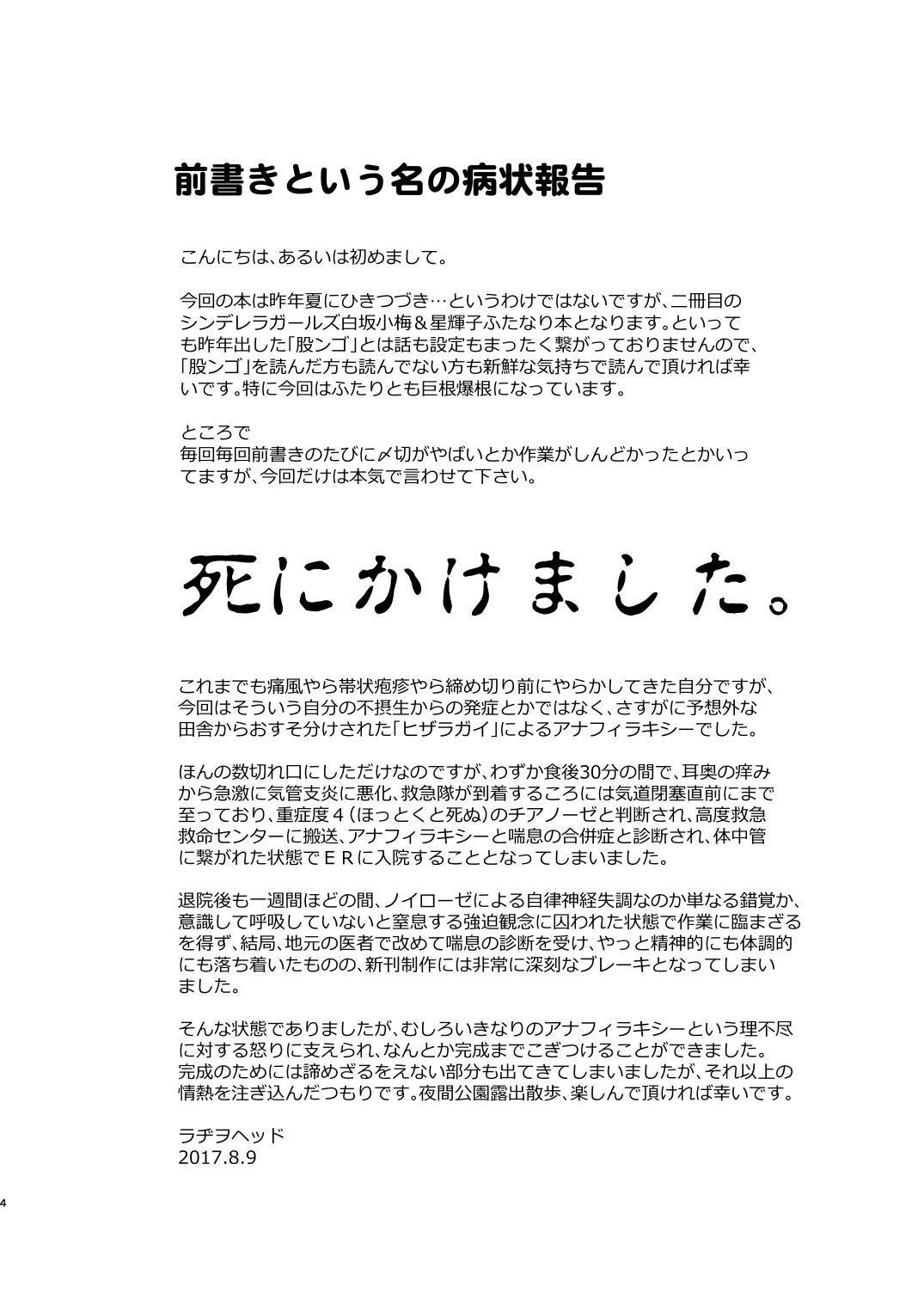 Totsuzen Honoo ga Gotoku 3