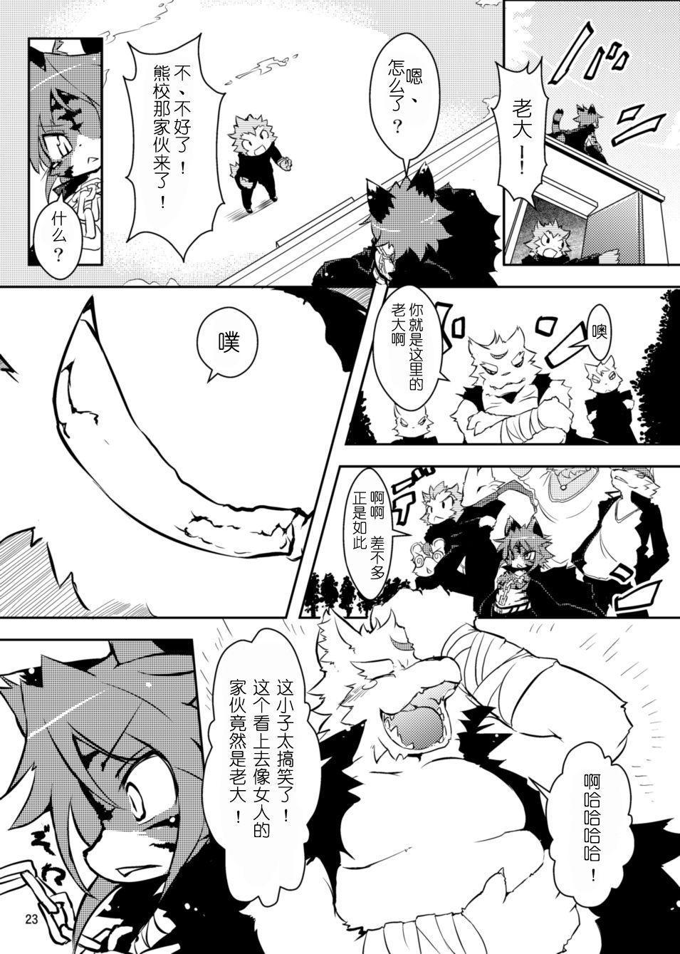 Sakigake! Toraman Bancho-chan! 5