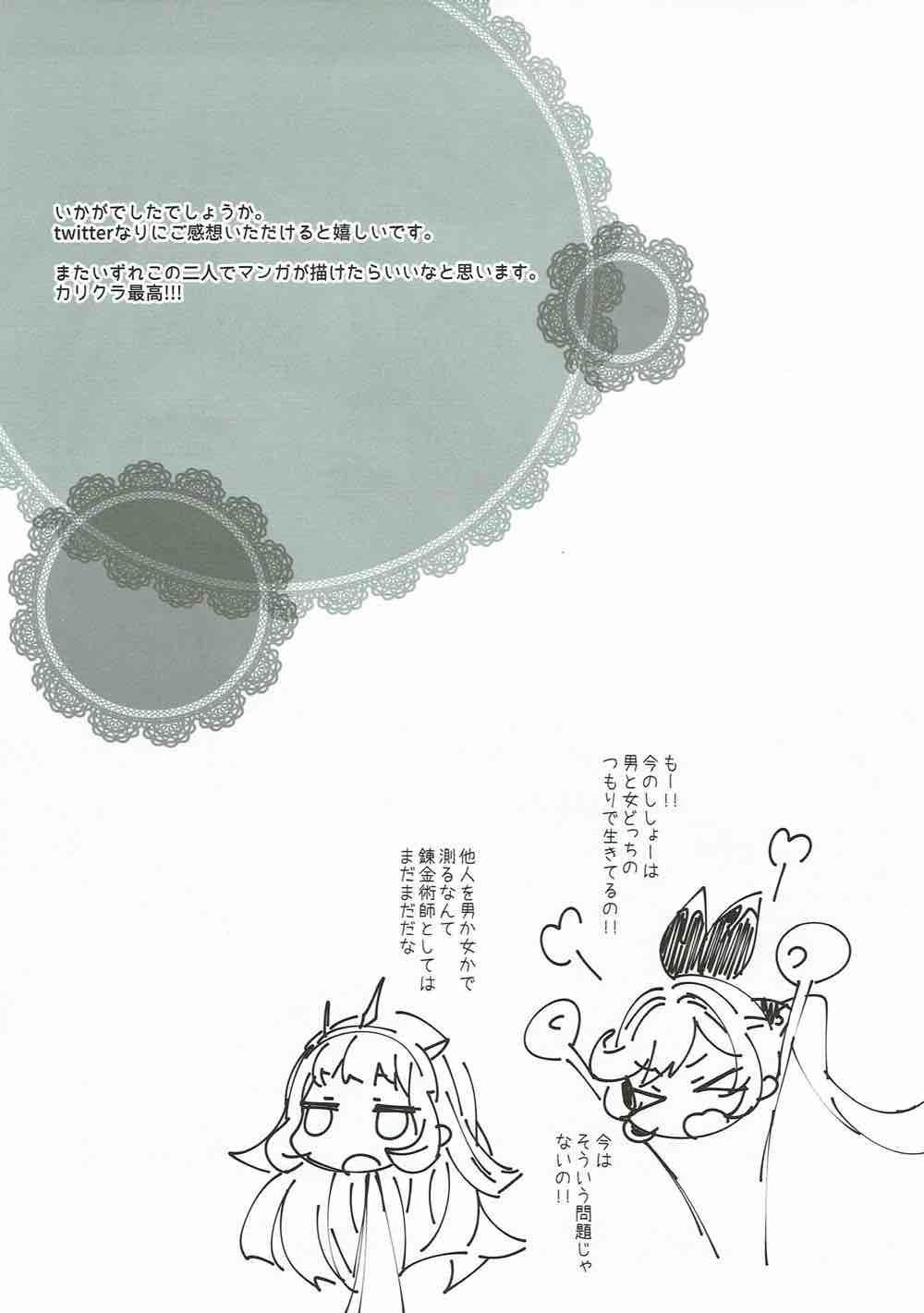 Danchou-san to Renkinjutsushi 23