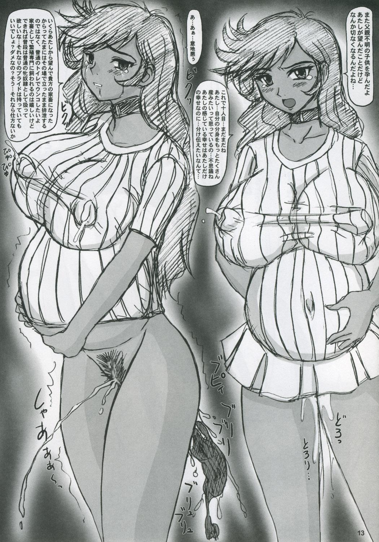 Iyashi no Megami e Sukui no Uta wo 11