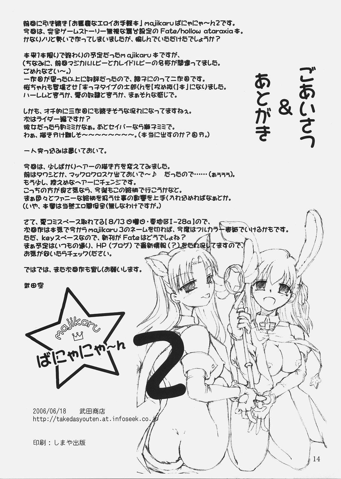 Magical Bunny Nyan 2 12