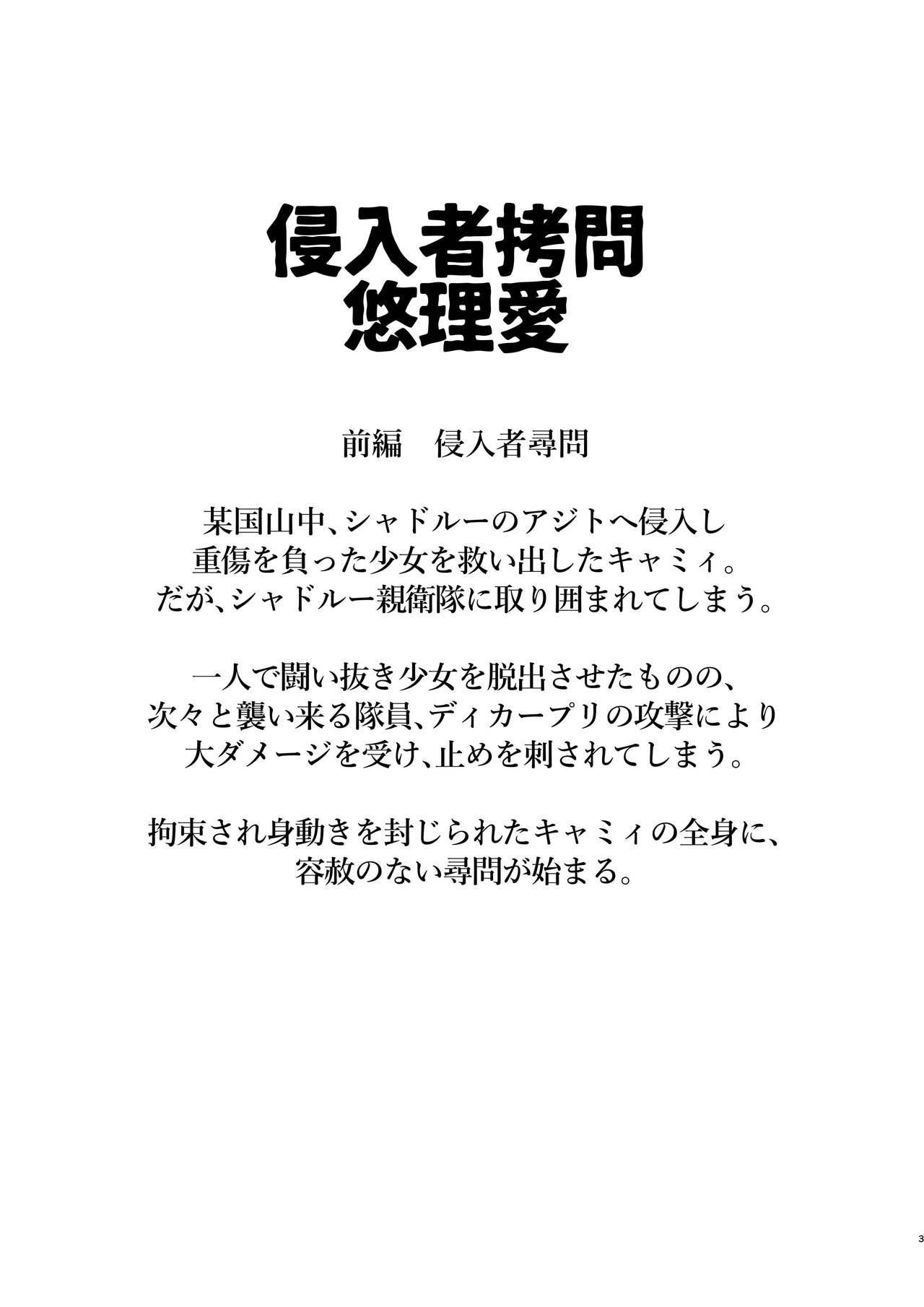 Shinnyuusha Goumon 2