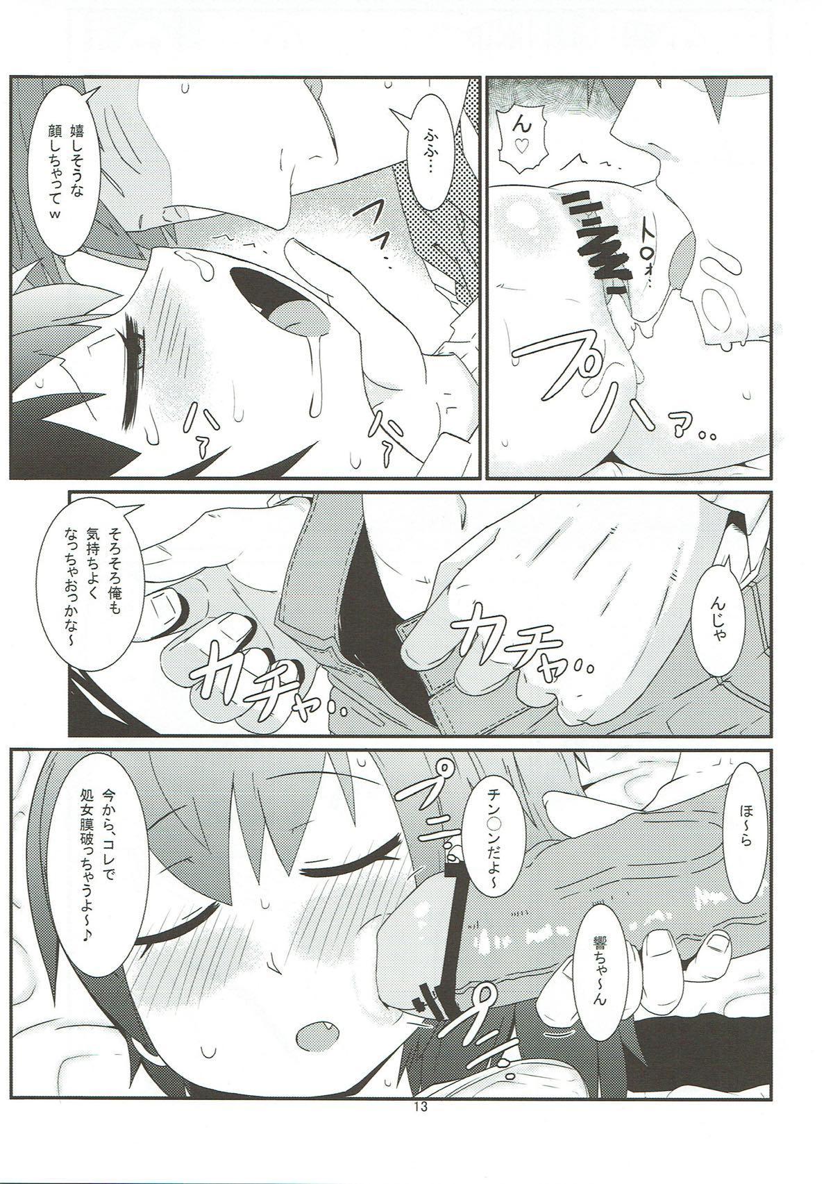 Hibiki no Jijou 13