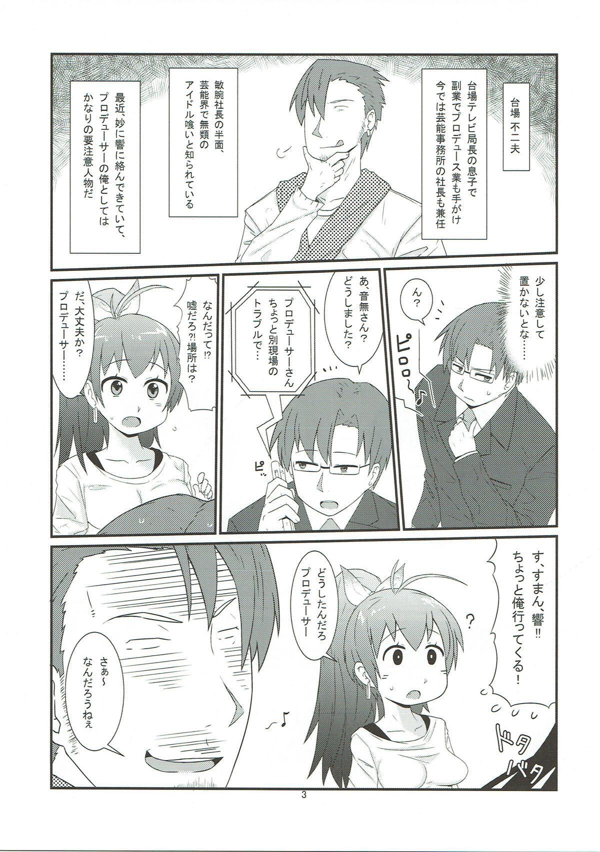 Hibiki no Jijou 3