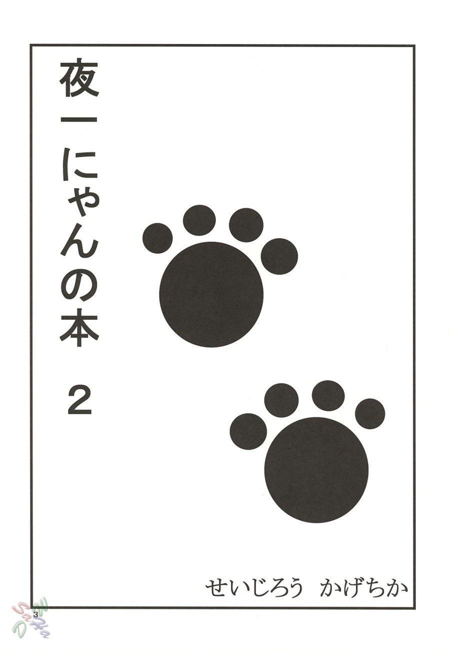 Yoruichi Nyan no Hon 2 1