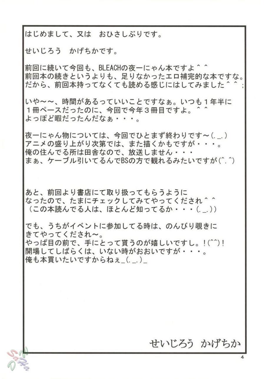 Yoruichi Nyan no Hon 2 2