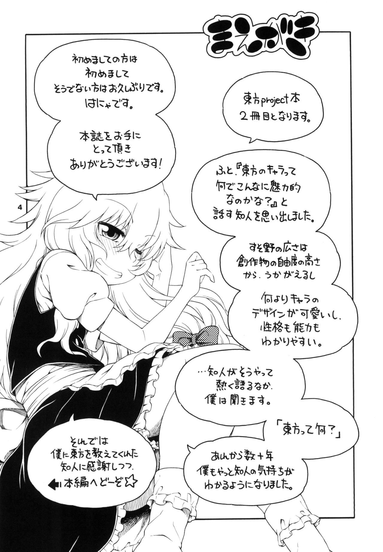 Touhou Meiko 3