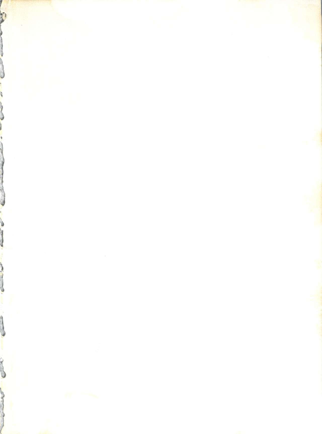 Yamainu Volume. 3 1
