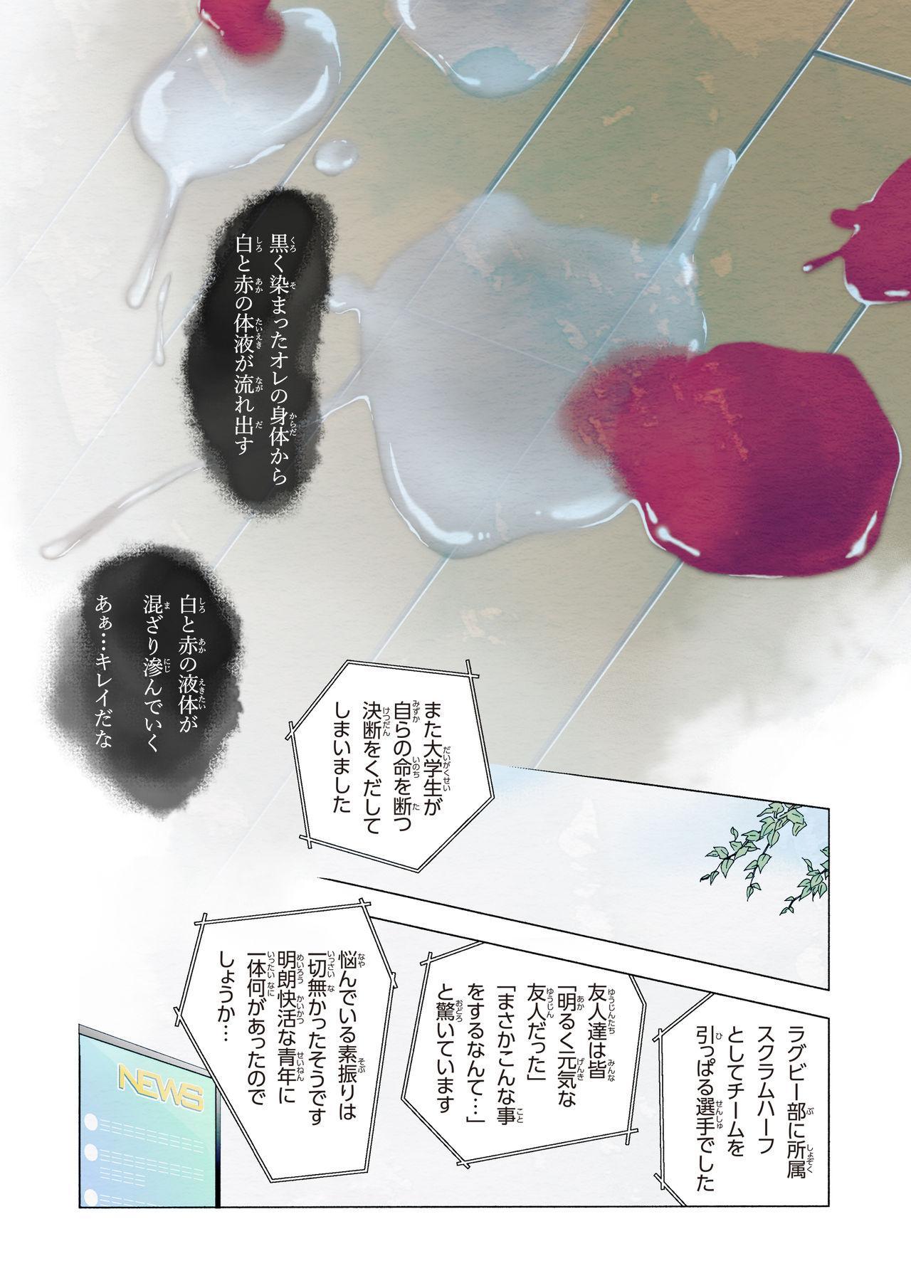 Shimi 24