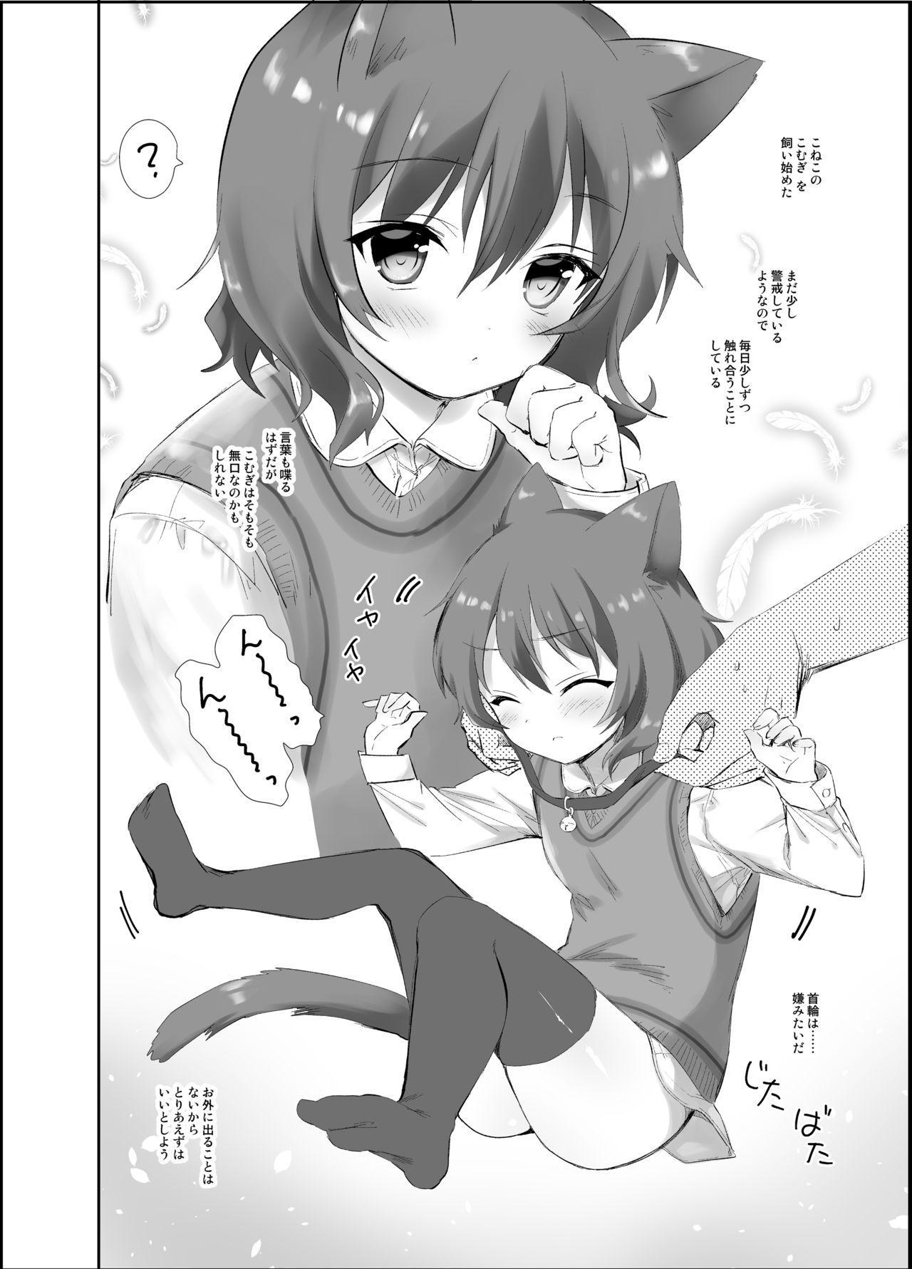 Koneko no Kaikata 2