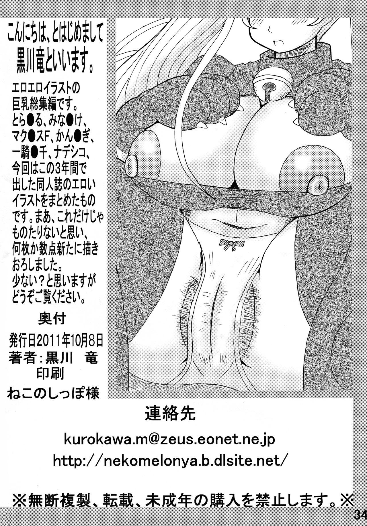 Bakunyuu Bishoujo Soushuuhen 33