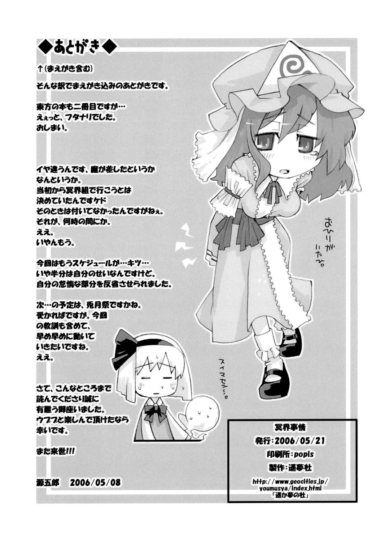 Meikai Jijou 17