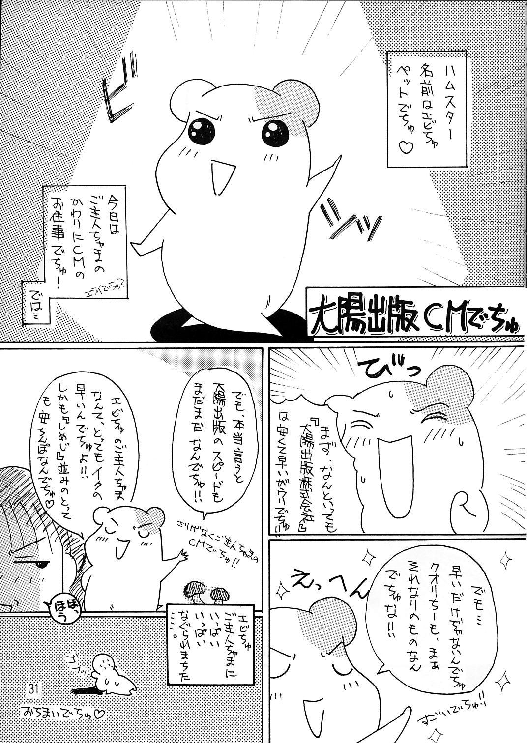Misokacchi 30