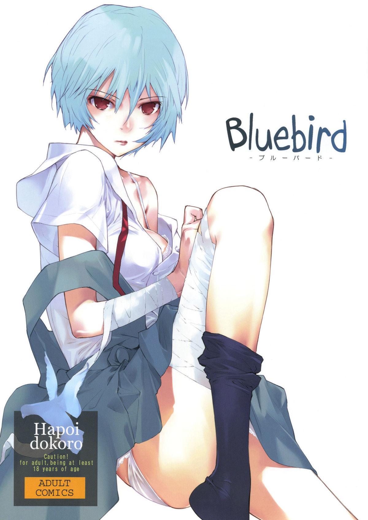 Bluebird 0