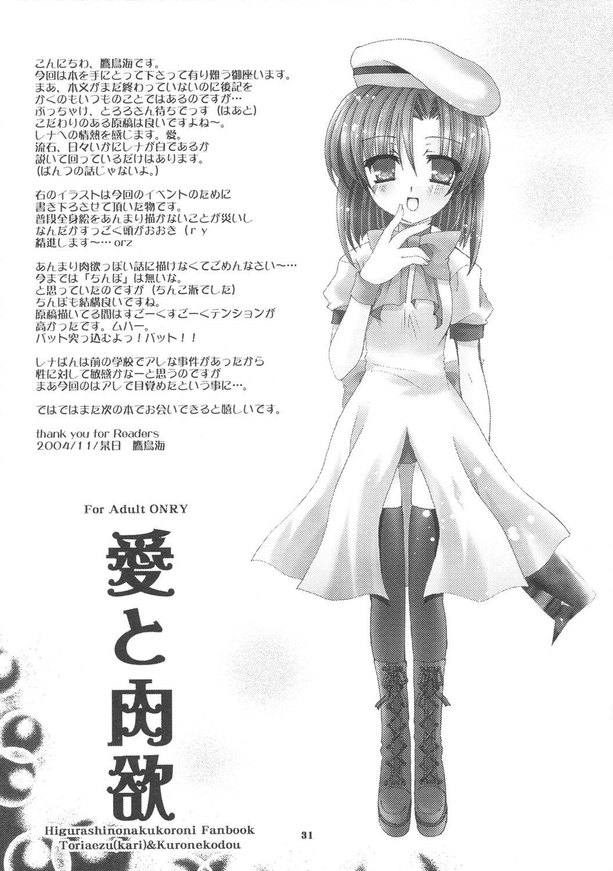 Ai to Nikuyoku 29