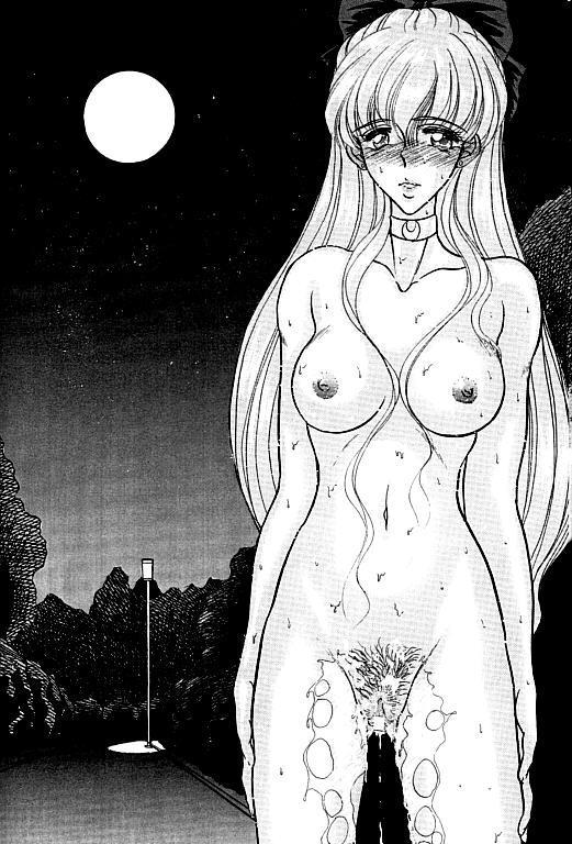 (SC1) [ENERGYA (Roshiya No Dassouhei)] COLLECTION OF -SAILORMOON- ILLUSTRATIONS FOR ADULT Vol.1 (Bishoujo Senshi Sailor Moon) 22