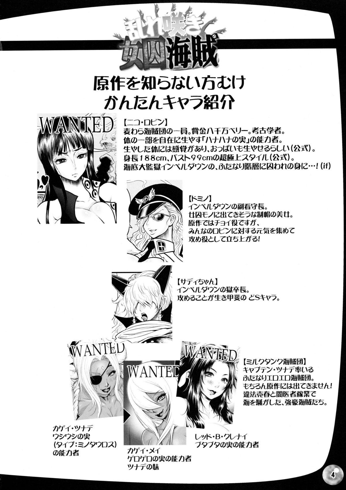 Midarezaki Joshuu Kaizoku 2