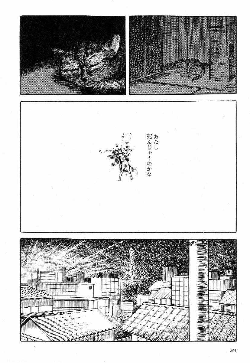 Love Letter from Kanata 102