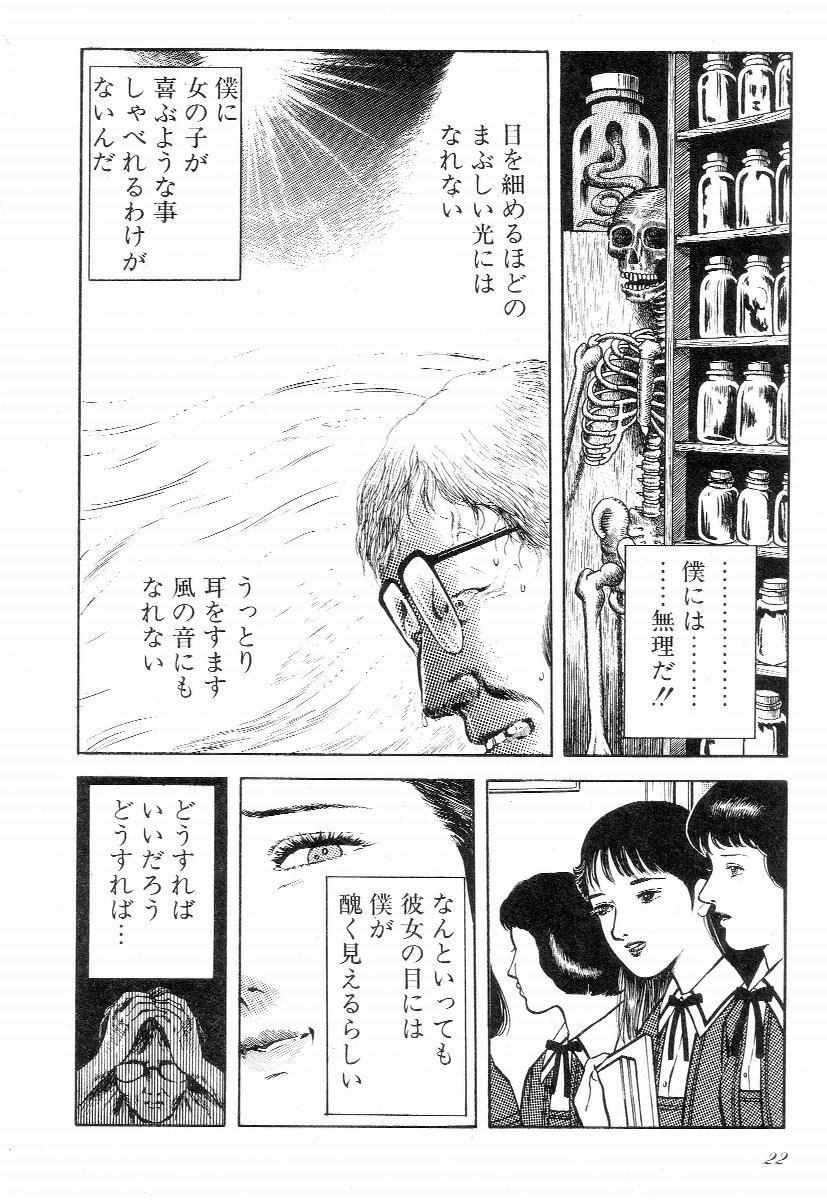 Love Letter from Kanata 26