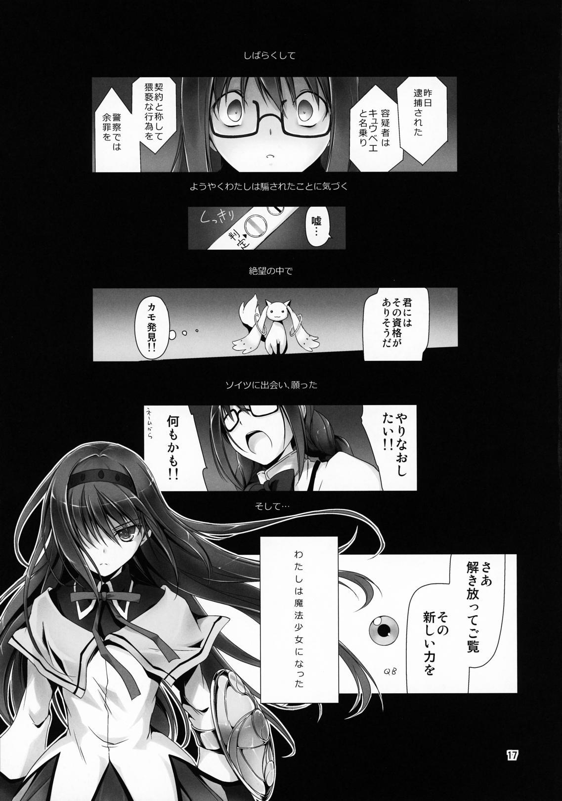 Megahomu-chan ni Kurosto Hakasetai!! 17