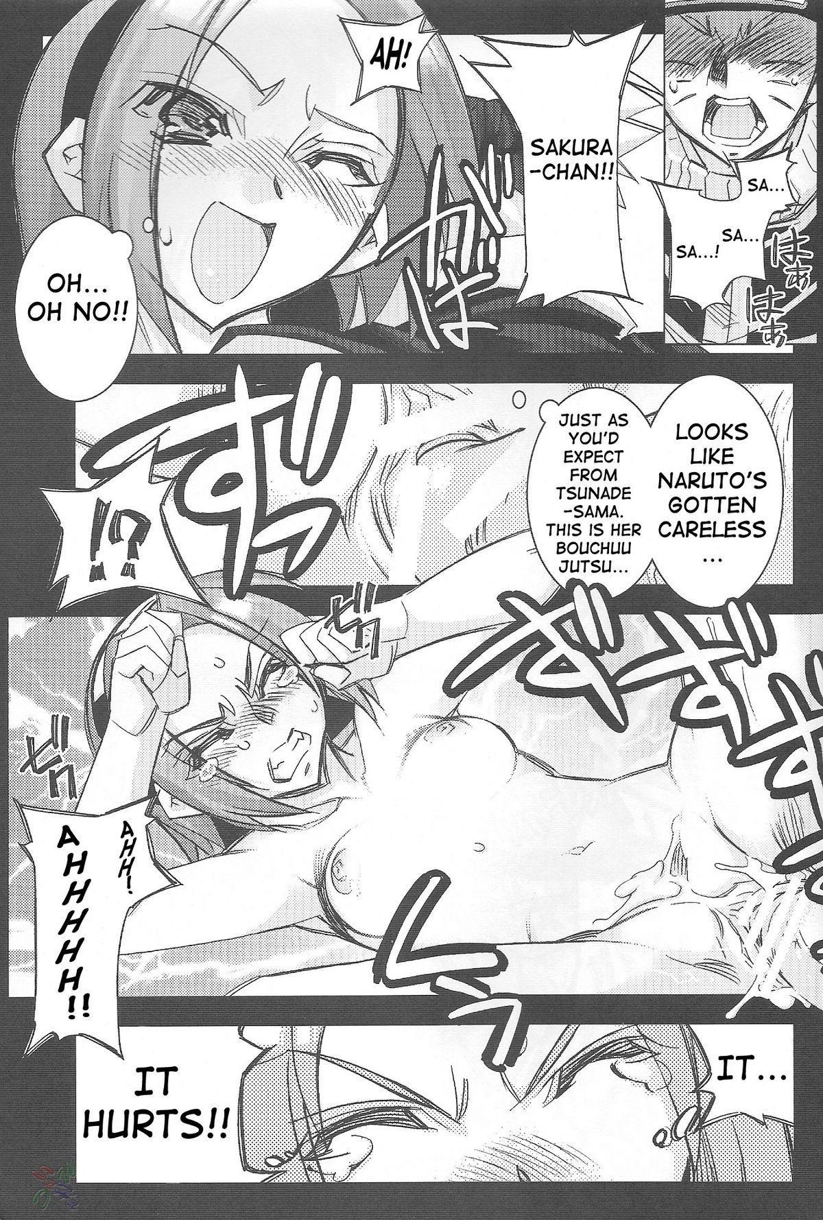 Sakurasaku Heisei Juunana Nen 9