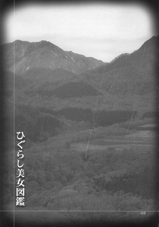 Higurashi Bijozukan 2