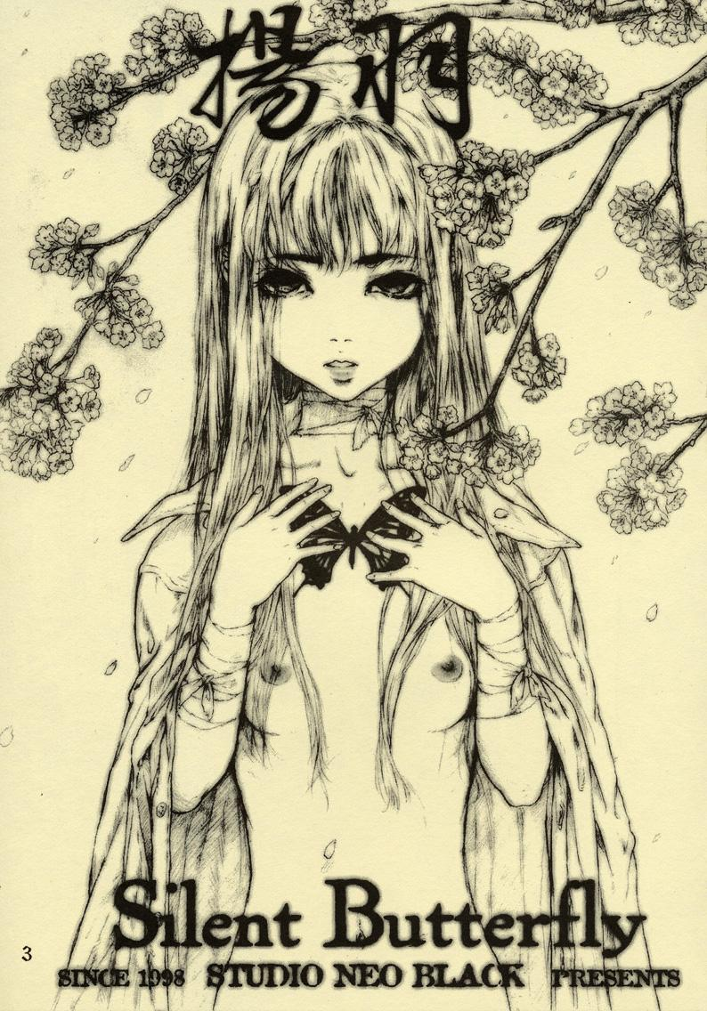 Silent Butterfly 1 1
