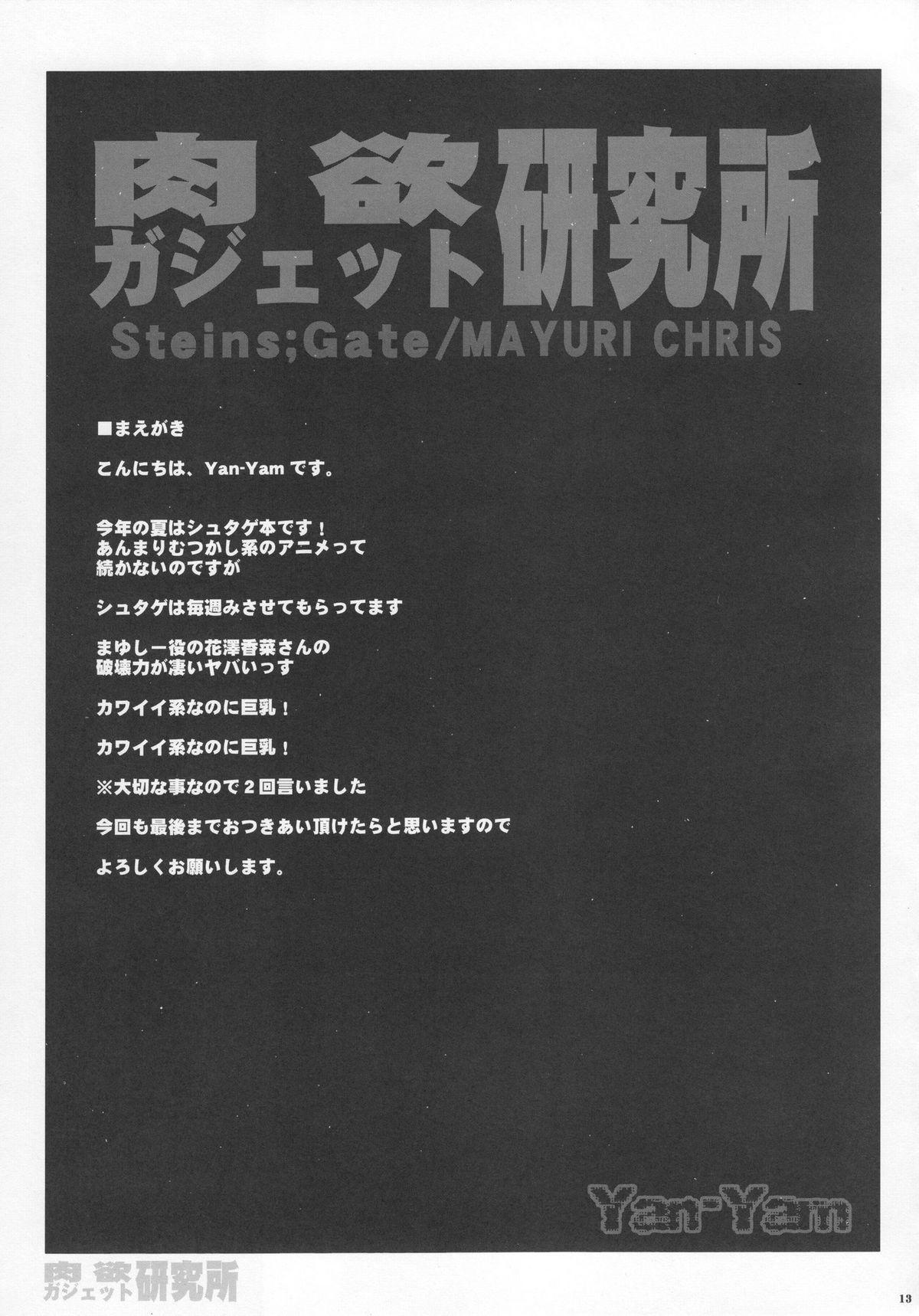 Nikuyoku Gadget Kenkyuujo 11