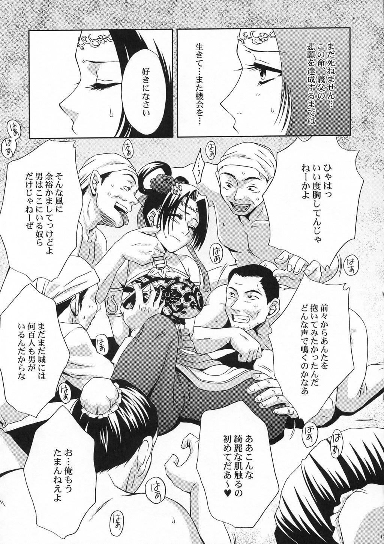 In Sangoku Musou Tensemi Gaiden 11